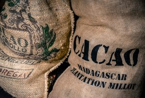 coffee bean bag-export